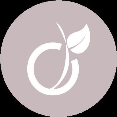 Logo-Viadéo